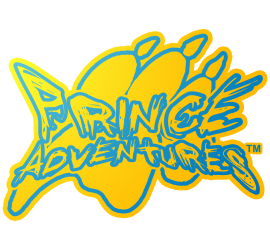 Prince Adventures (TM) LOGO
